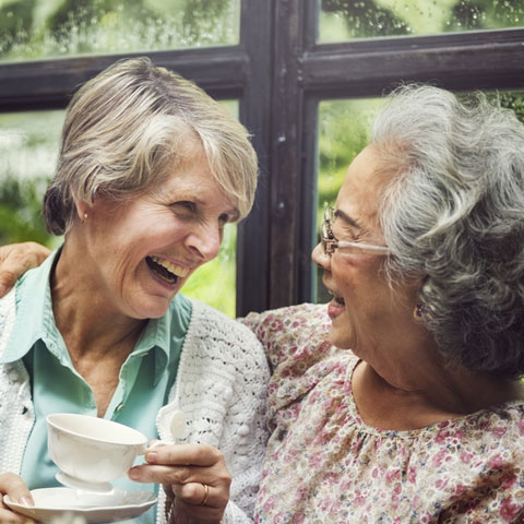 News - The Secrets to Living a Long and Happy Life!